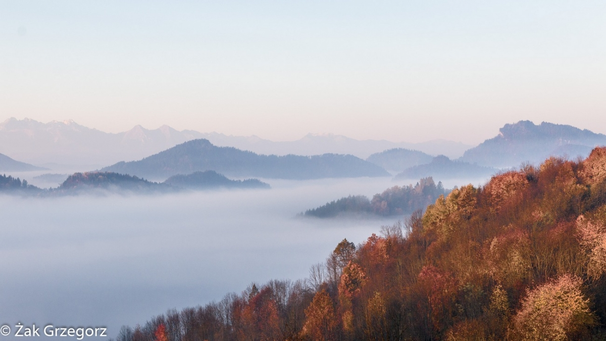 Jesienne mgły nadSzczawnicą zdrogi naBereśnik