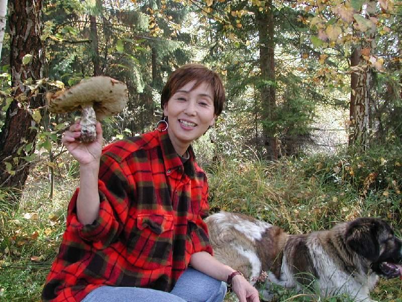Jesienią lasy są pełne taakich grzybów!
